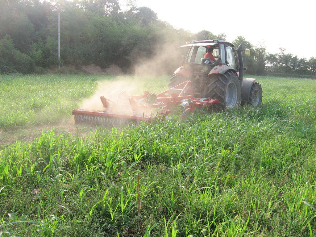 Il coltivatore Kverneland CLC Pro al lavoro su erbai