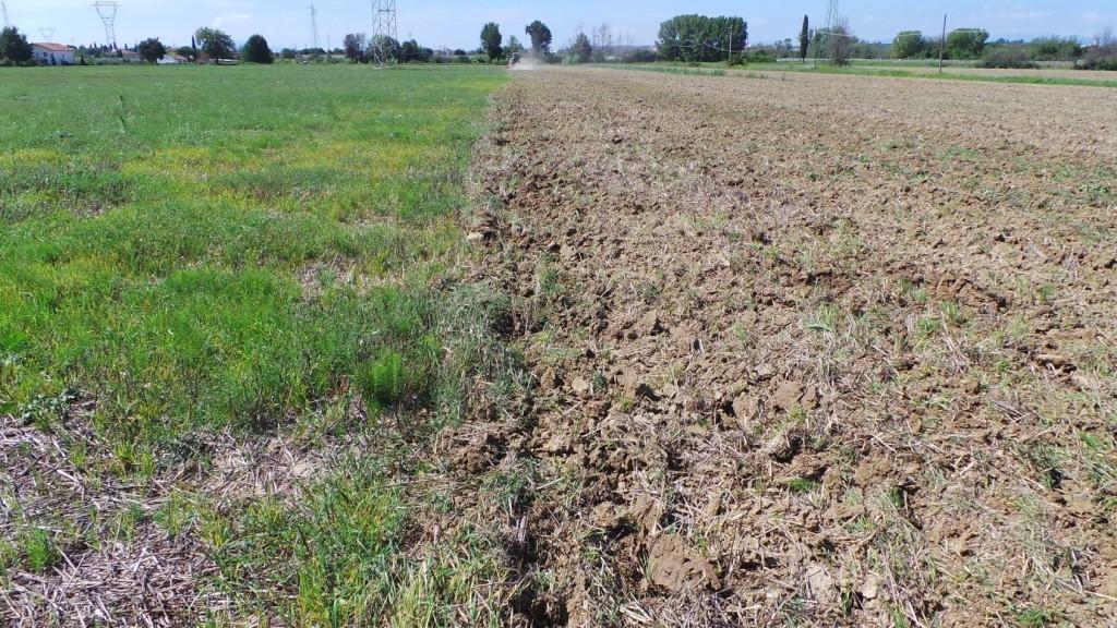 Ecco il risultato dopo un primo passaggio in andata con Qualidisc. Il terreno risulta già frabile con un buon drenaggio in profondità ed è pronto per la semina.