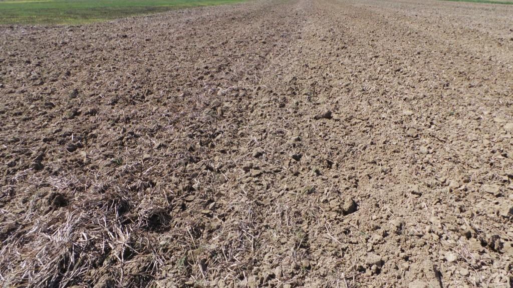 A sinistra il terreno dopo il primo passaggio e a destra lo stato degli agglomerati dopo un secondo passaggio di Qualidisc.