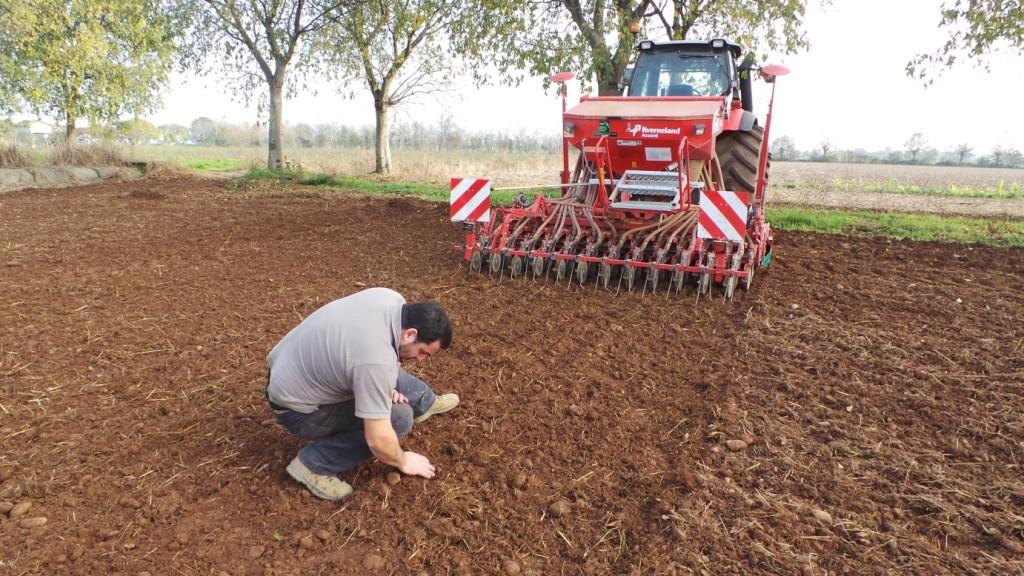 Alessandro Rossi verifica la precisione di lavoro della seminatrice che ha deposto il frumento foraggero Ludwig.