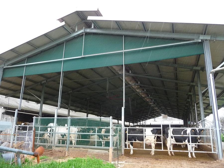 La buona gestione della stalla è fondamentale per non avere un allevamento in perdita.