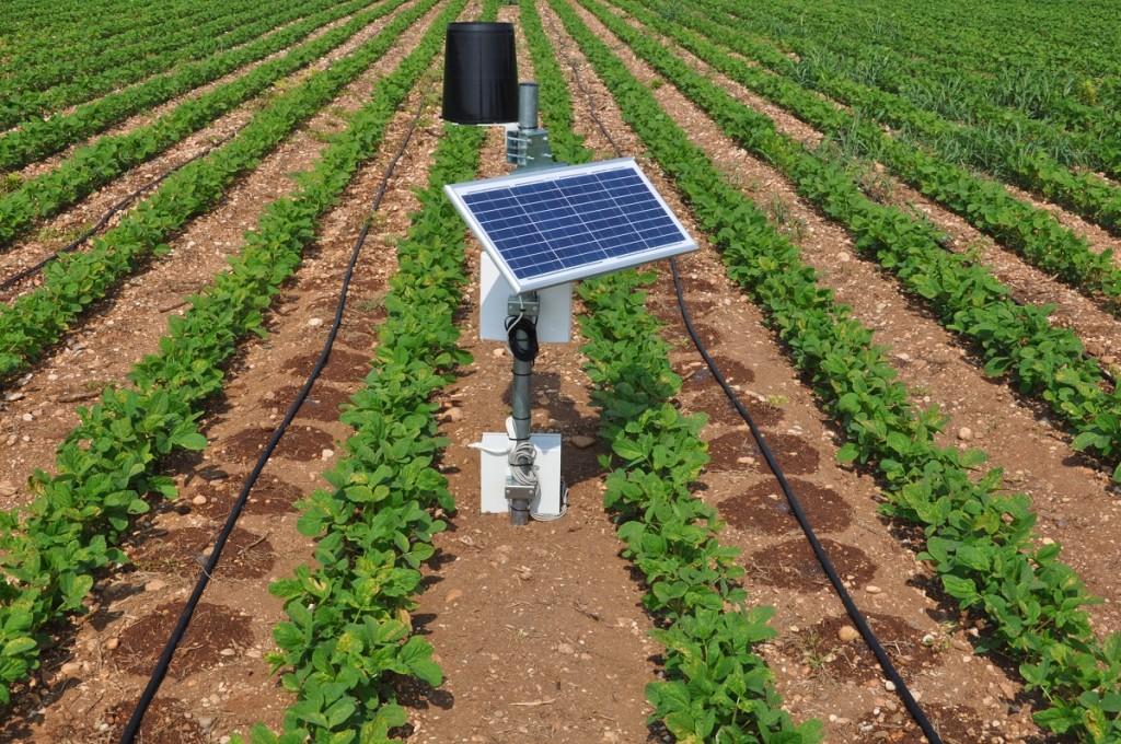 Centralina con sonda per il monitoraggio dell'umidità del suolo al fine di determinare il momento ideale di irrigazione della soia.