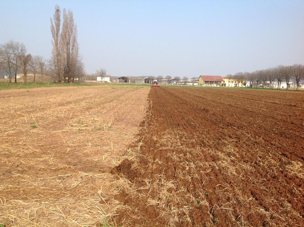 Il terreno dove ha operato la preparazione del letto di semina il coltivatore CLC Pro di Kverneland. A sinistra si nota la porzione di terreno ricoperto dai residui colturali sminuzzati.